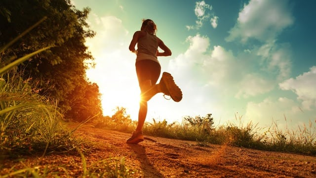 article, exercise, and health image