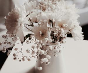 decor, flowers, and inspiration image
