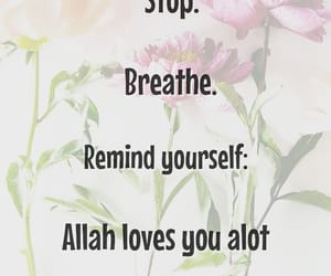 allah, beautiful, and flowers image