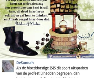 desunnah, isis, and dieren image