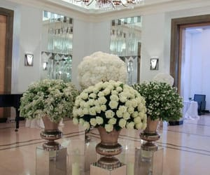 flowers, luxury, and home image