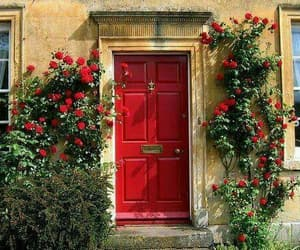 red, flowers, and door image