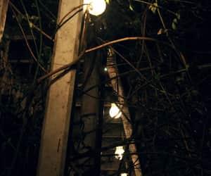 foto, inspiration, and lights image