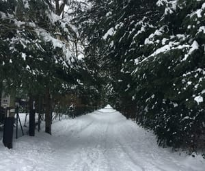 geneva, snow, and snowy image