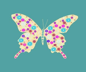 background, butterfly, and beautiful image
