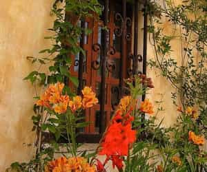 architecture, garden, and flowers image
