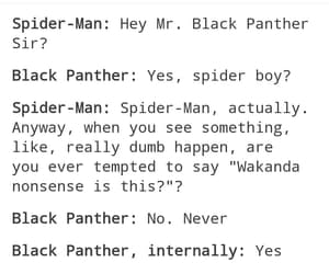 black panther, tumblr, and funny image