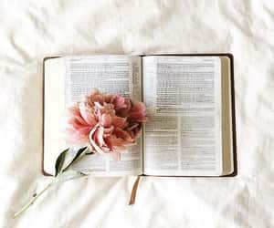 flowers, book, and bible image