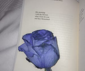 blue, flower, and poetry image