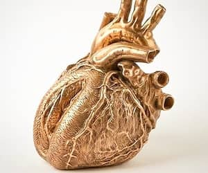 gold and heart image