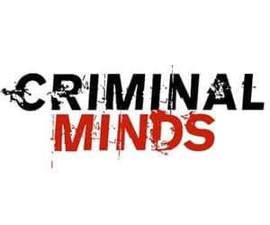 tv series and criminal minds image