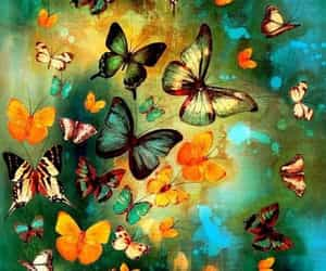 belleza, mariposas, and buterfly image