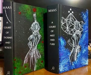 books, acotar, and acomaf image