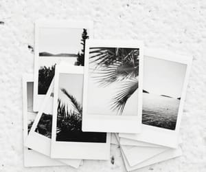 polaroid, aesthetic, and photo image