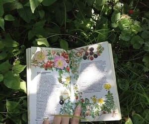article, english, and livre image