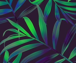 aesthetic, green, and background image