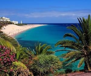 beach, fuerteventura, and travel image