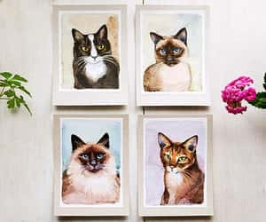 etsy, meow, and watercolor painting image