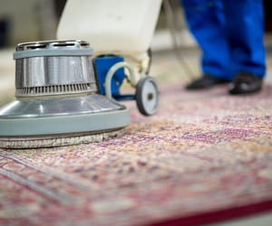 melbourne and rug cleaning image