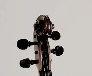 violin and viola image