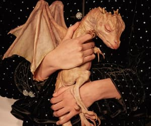 beautiful, dragon, and folklore image