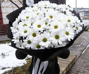 bouquet, flowers, and black image