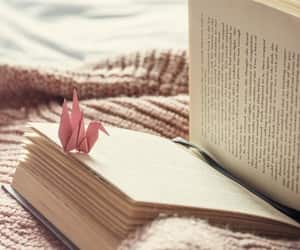 aesthetic, book, and cosy image