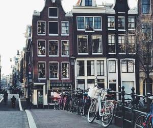 adam, amsterdam, and bike image