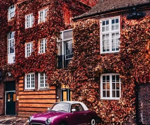 autumn, car, and vintage image