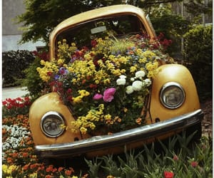 bohemian, car, and floral image