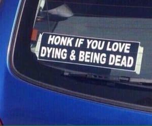 *honks*