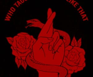 aesthetic, edgy, and red image