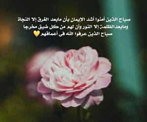 arabic, bon jour, and morning image