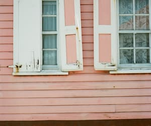 pink, windows, and rosegold image