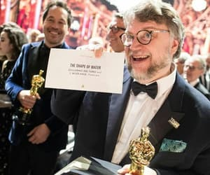 guillermo del toro, oscars, and the shape of water image