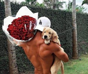 dog, flowers, and boy image