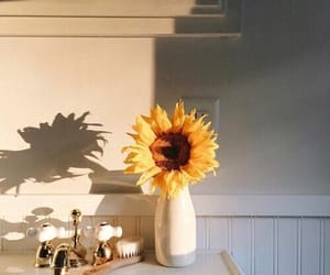 aesthetic, photography, and sunflower image