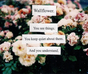 wallflower, quote, and flowers image