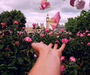 flowers, london, and city image