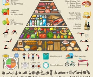 body image, lifestyle, and balanced diet image