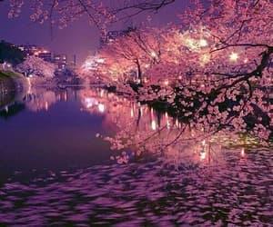 asia, beautiful, and nature image