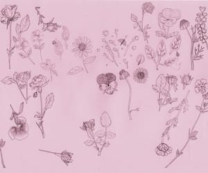 flowers, pink, and drawing image