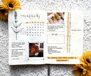 journal, planner, and bullet journal image