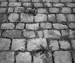 cobblestones, gray, and grey image