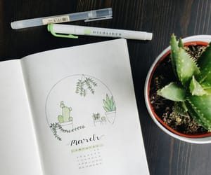 bullet, journal, and cactus image