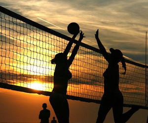 summer and volleyball image