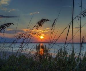 beach, Georgia, and nature image