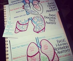 cardiac, ems, and study image