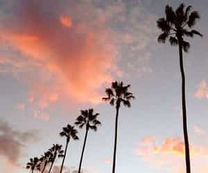 california, palm trees, and clouds image