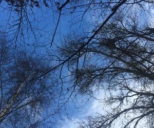 Bleu, natur, and peace image